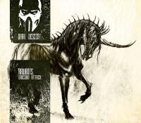 [DD13057] Rawbots – Unicorn Attack