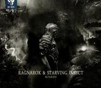 [DD00065] Ragnarok & Starving Insect – Sunken