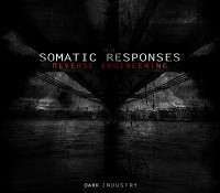 [DI.II] Somatic Responses – Reverse Engineering
