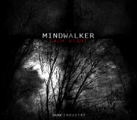 [DI.V] Mindwalker – Calm Night