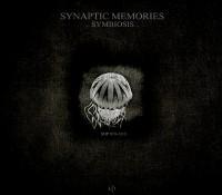 [SOP 019-1313] Synaptic Memories – Symbiosis