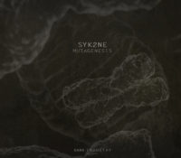 [DI.XVIII] Syk2ne – Mutagenesis